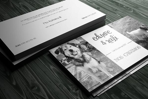 Foto de una invitación con perros
