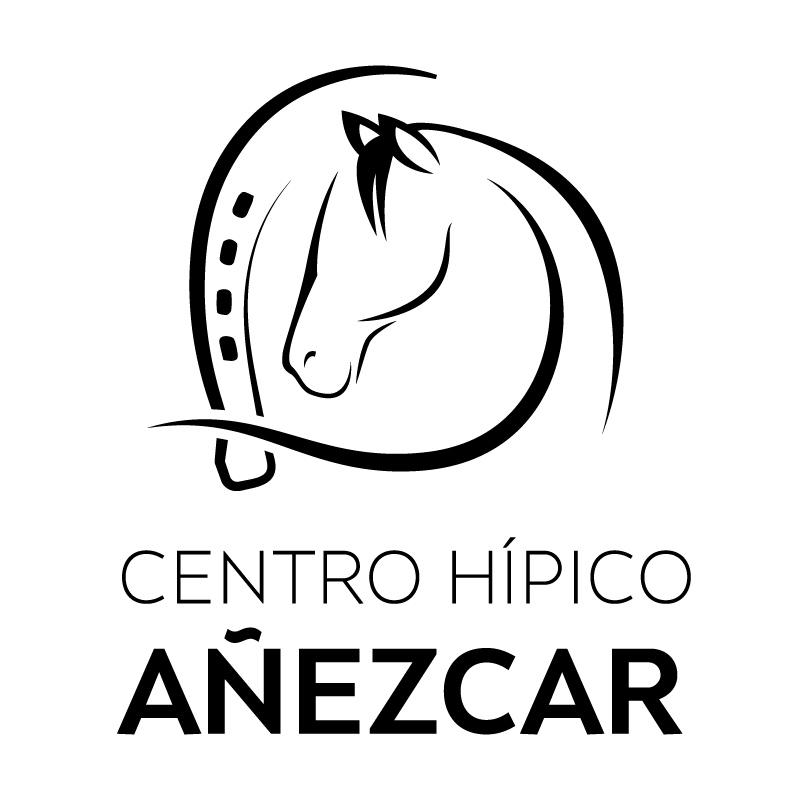 Logotipo Centro Hípico Añézcar con un caballo y una herradura
